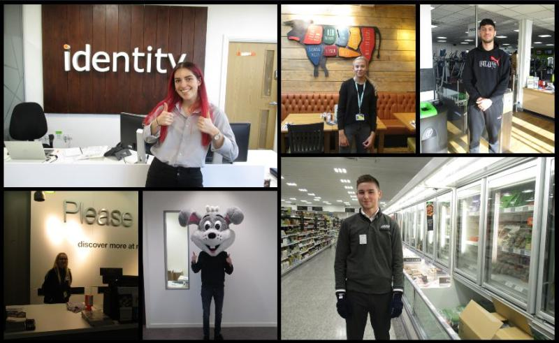 Business Student Work Experience
