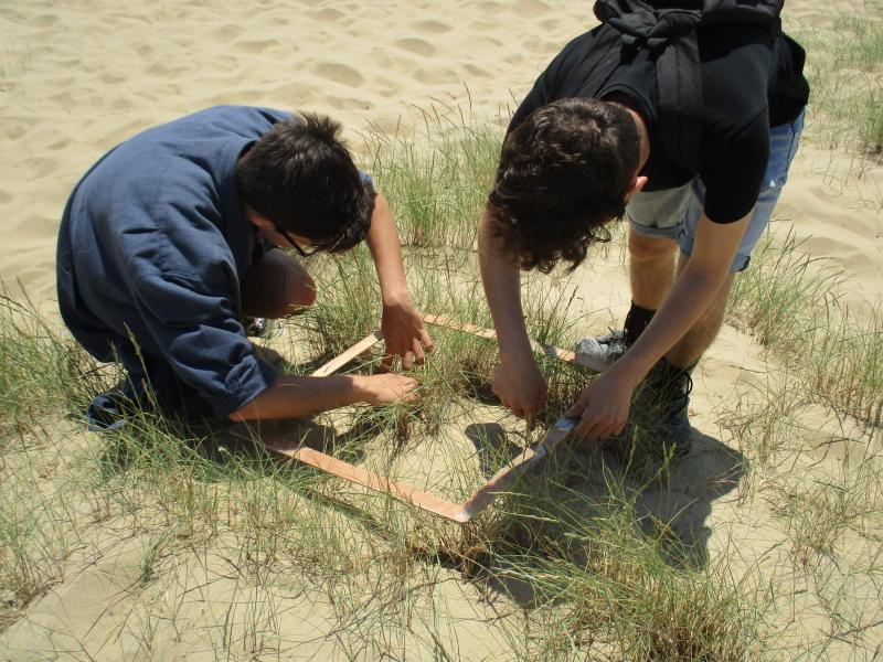Biology Students Investigate Ecological Succession